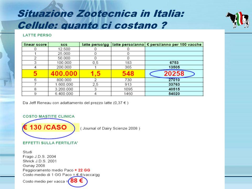 Assistenza tecnica zootecnica Borgomanero 24 - 02- 2010 Situazione Zootecnica in Italia: Cellule: quanto ci costano