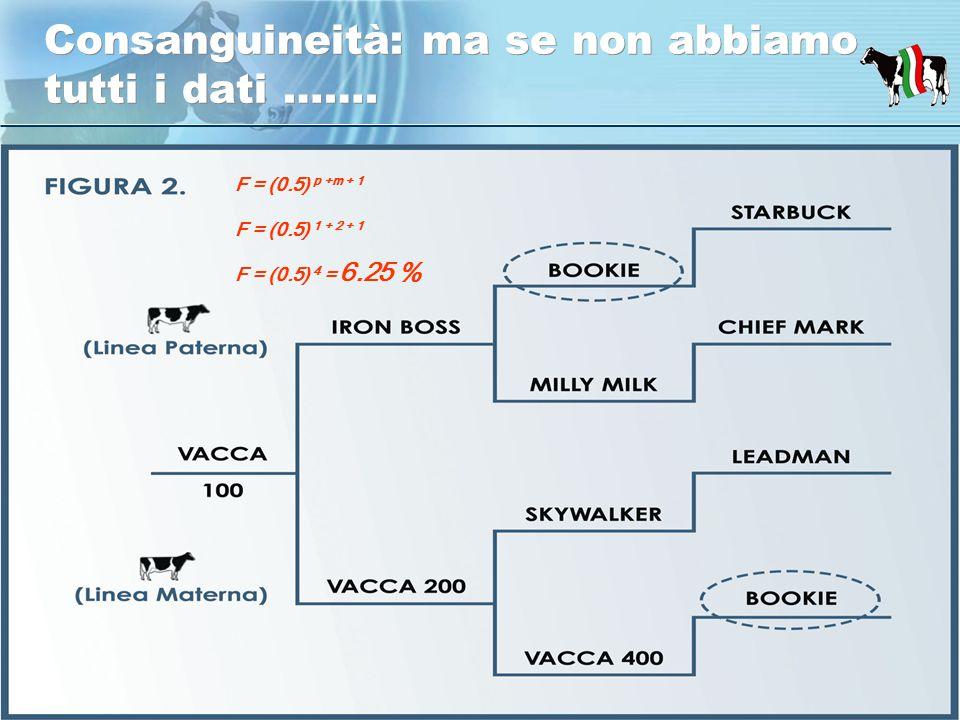 Assistenza tecnica zootecnica Borgomanero 24 - 02- 2010 Consanguineità: ma se non abbiamo tutti i dati …….