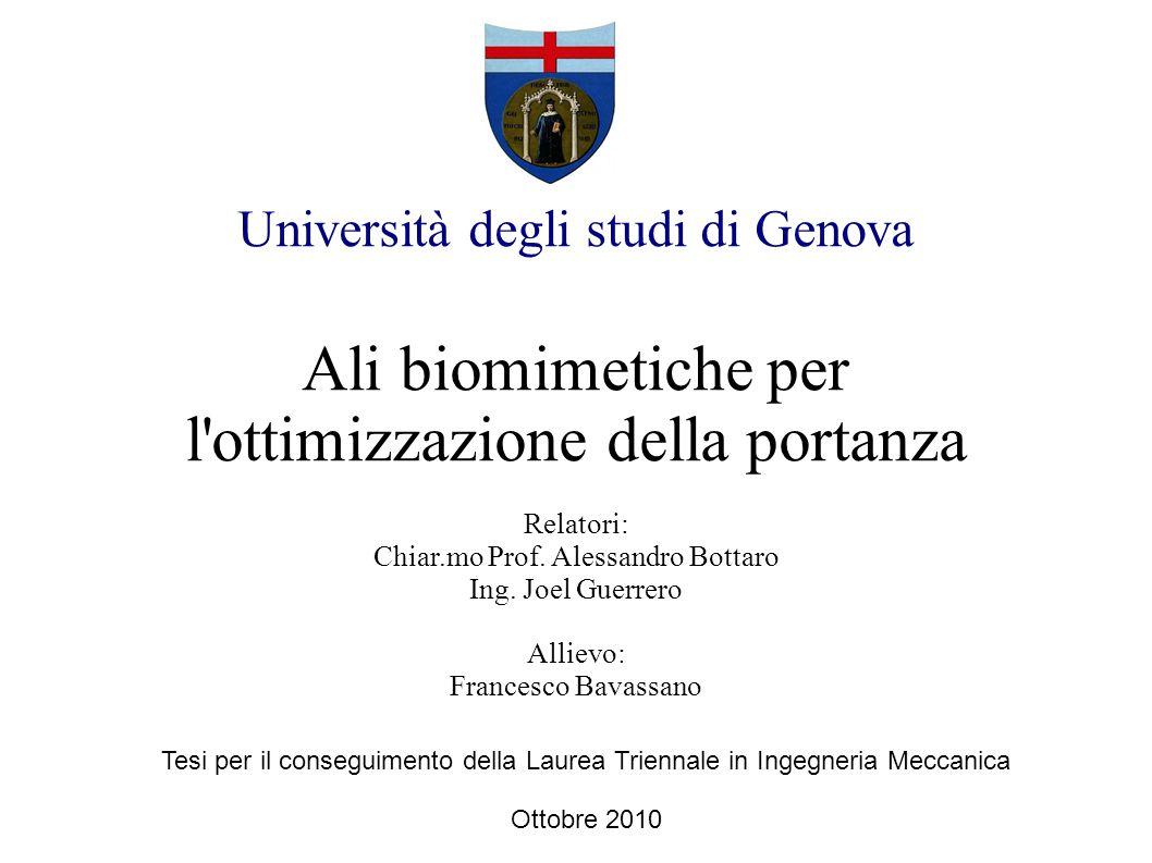 Università degli studi di Genova Ali biomimetiche per l'ottimizzazione della portanza Relatori: Chiar.mo Prof. Alessandro Bottaro Ing. Joel Guerrero A