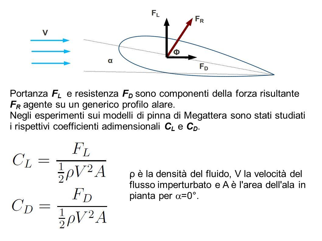 Portanza F L e resistenza F D sono componenti della forza risultante F R agente su un generico profilo alare. Negli esperimenti sui modelli di pinna d