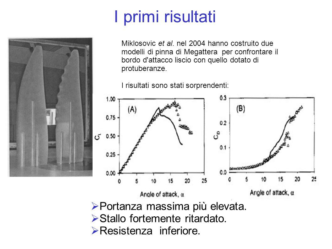 Miklosovic et al. nel 2004 hanno costruito due modelli di pinna di Megattera per confrontare il bordo d'attacco liscio con quello dotato di protuberan