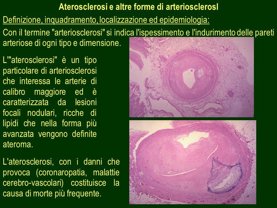 47 Aterosclerosi e altre forme di arteriosclerosl Definizione, inquadramento, localizzazione ed epidemiologia: Con il termine arteriosclerosi si indica l ispessimento e l indurimento delle pareti arteriose di ogni tipo e dimensione.