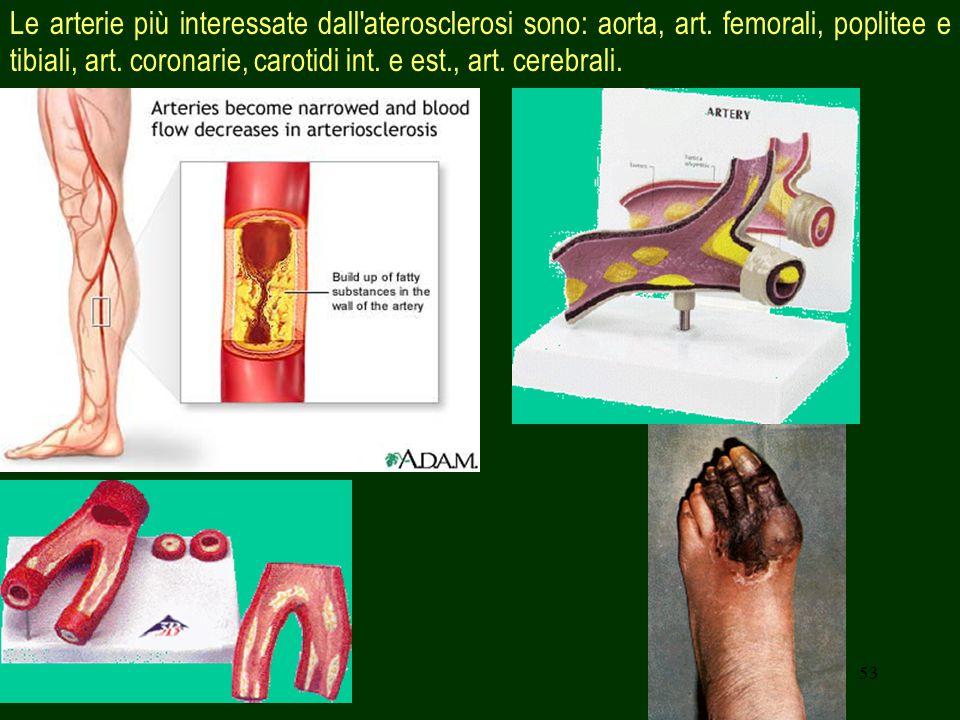 53 Le arterie più interessate dall aterosclerosi sono: aorta, art.