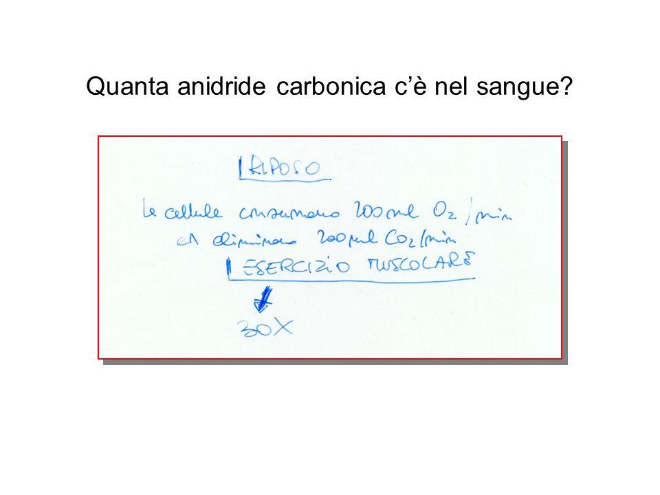 Quanta anidride carbonica c'è nel sangue?
