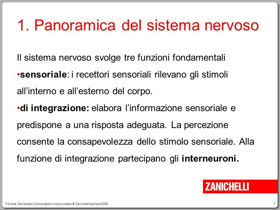 7 Il sistema nervoso svolge tre funzioni fondamentali sensoriale: i recettori sensoriali rilevano gli stimoli all'interno e all'esterno del corpo.