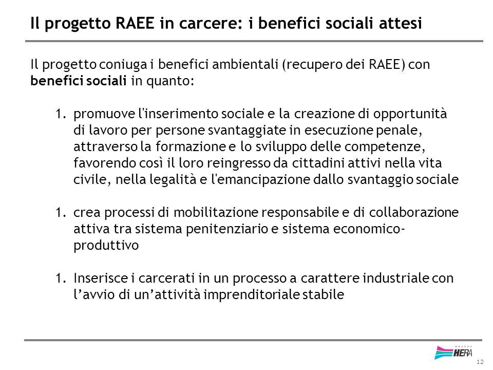 12 Il progetto RAEE in carcere: i benefici sociali attesi Il progetto coniuga i benefici ambientali (recupero dei RAEE) con benefici sociali in quanto