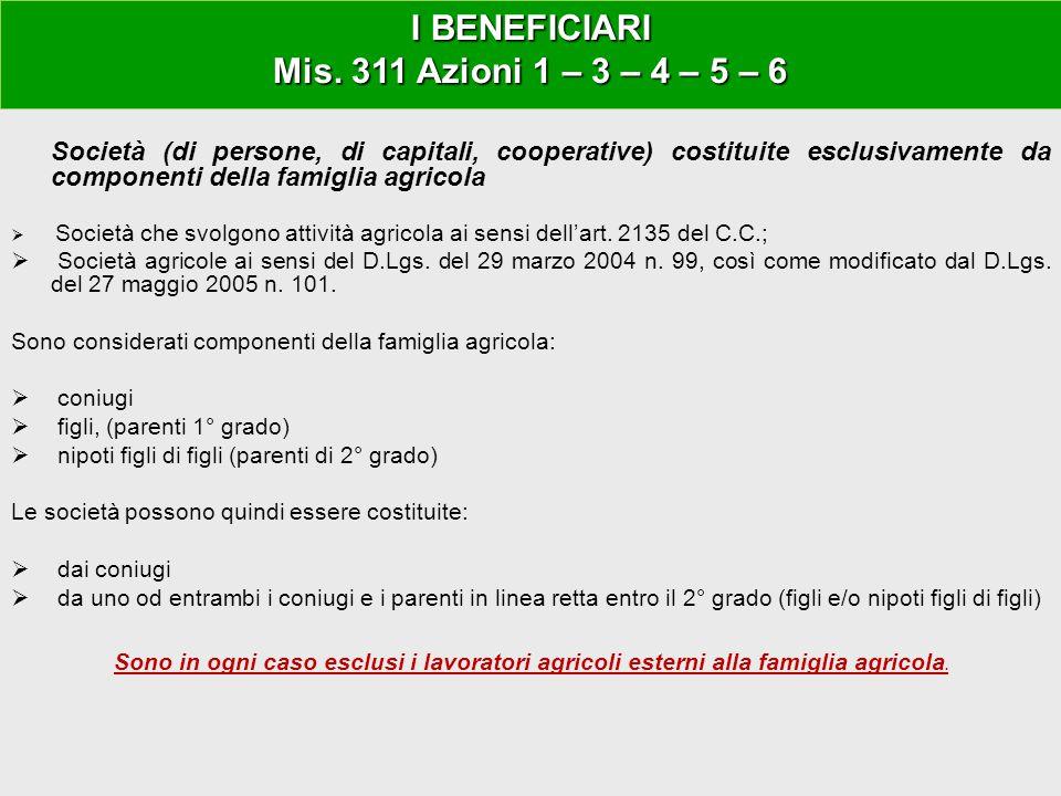 GAL ANGLONA ROMANGIA Società (di persone, di capitali, cooperative) costituite esclusivamente da componenti della famiglia agricola  Società che svol