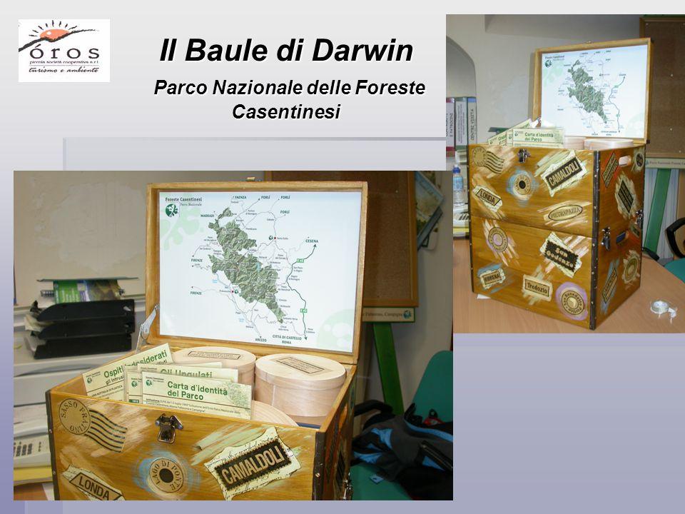 Il Baule di Darwin Parco Nazionale delle Foreste Casentinesi Parco Nazionale delle Foreste Casentinesi