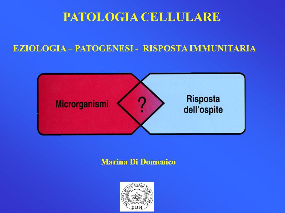 PATOLOGIA CELLULARE EZIOLOGIA – PATOGENESI - RISPOSTA IMMUNITARIA Marina Di Domenico