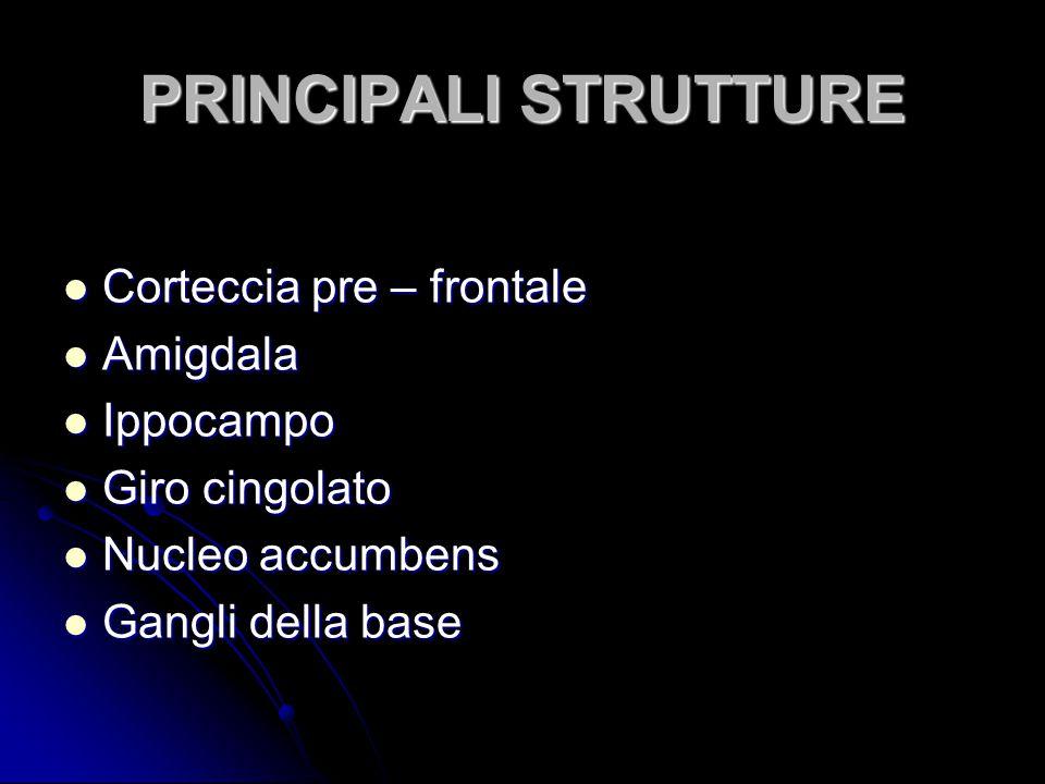 PRINCIPALI STRUTTURE Corteccia pre – frontale Corteccia pre – frontale Amigdala Amigdala Ippocampo Ippocampo Giro cingolato Giro cingolato Nucleo accu