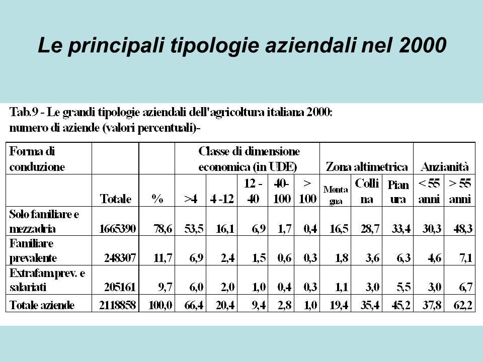 Le principali tipologie aziendali nel 2000
