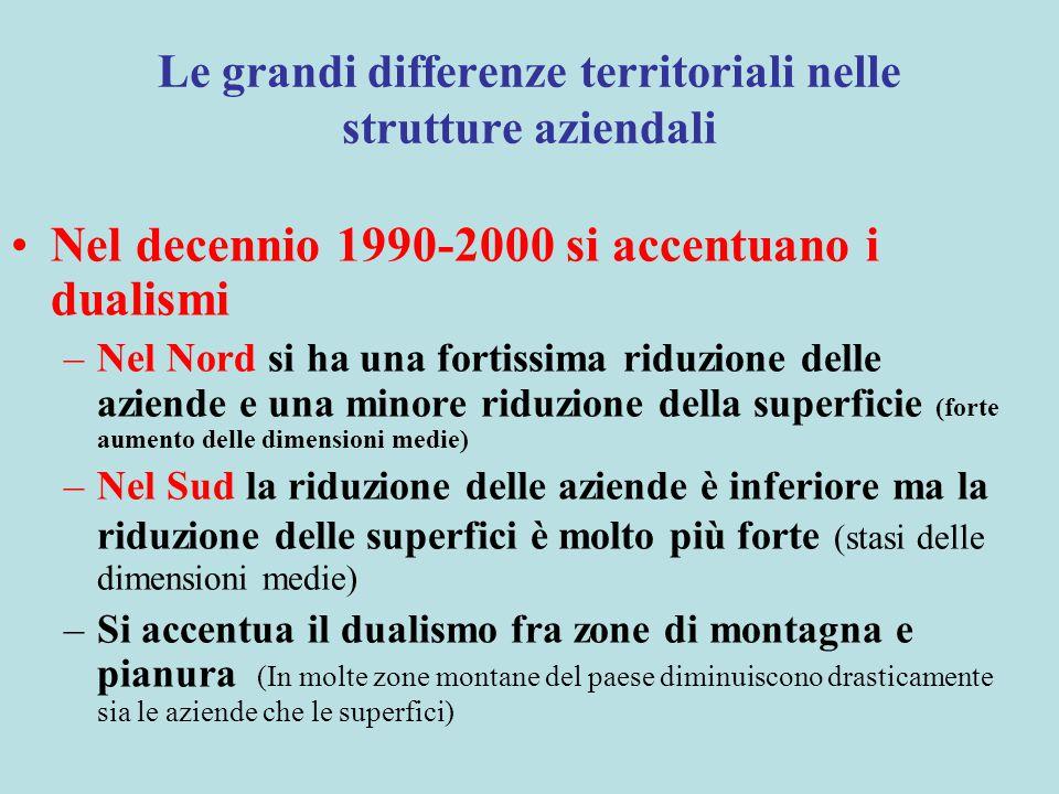 Le grandi differenze territoriali nelle strutture aziendali Nel decennio 1990-2000 si accentuano i dualismi –Nel Nord si ha una fortissima riduzione d