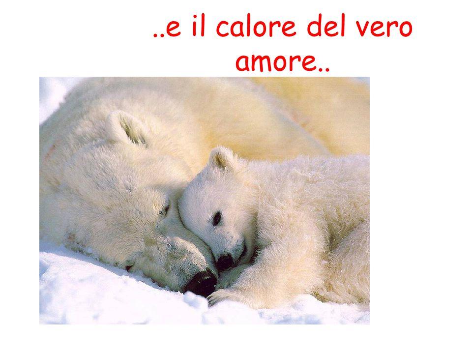 ..e il calore del vero amore..