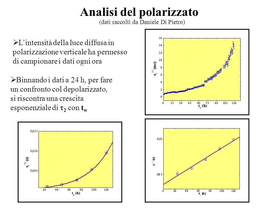 Analisi del polarizzato  L'intensità della luce diffusa in polarizzazione verticale ha permesso di campionare i dati ogni ora (dati raccolti da Daniele Di Pietro)  Binnando i dati a 24 h, per fare un confronto col depolarizzato, si riscontra una crescita esponenziale di  2 con t w