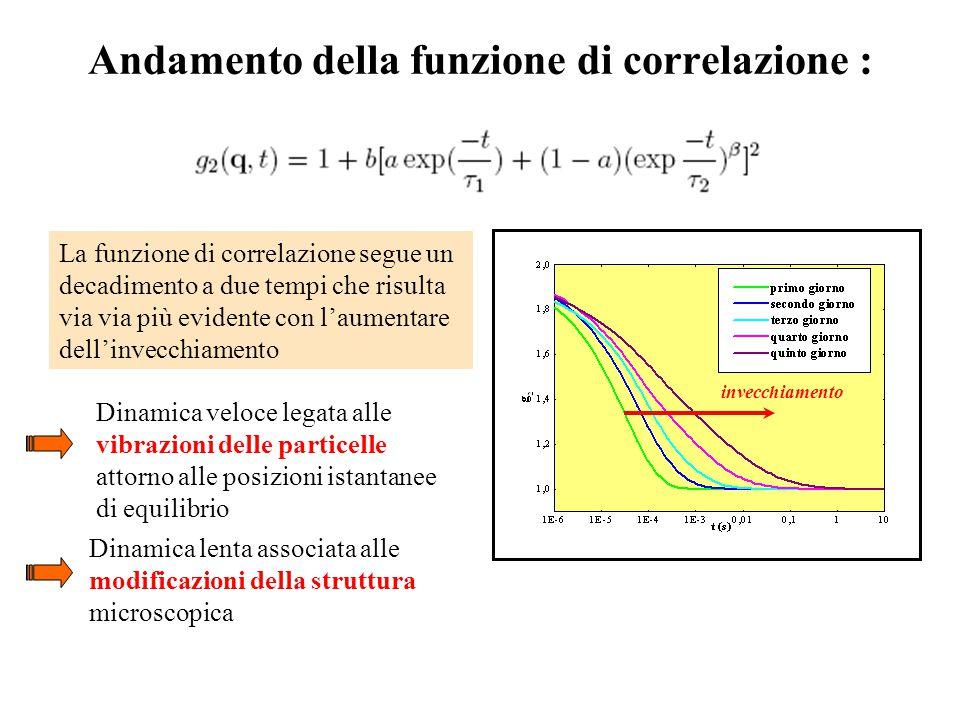 Andamento della funzione di correlazione : La funzione di correlazione segue un decadimento a due tempi che risulta via via più evidente con l'aumentare dell'invecchiamento Dinamica veloce legata alle vibrazioni delle particelle attorno alle posizioni istantanee di equilibrio Dinamica lenta associata alle modificazioni della struttura microscopica Invecchiamentoinvecchiamento