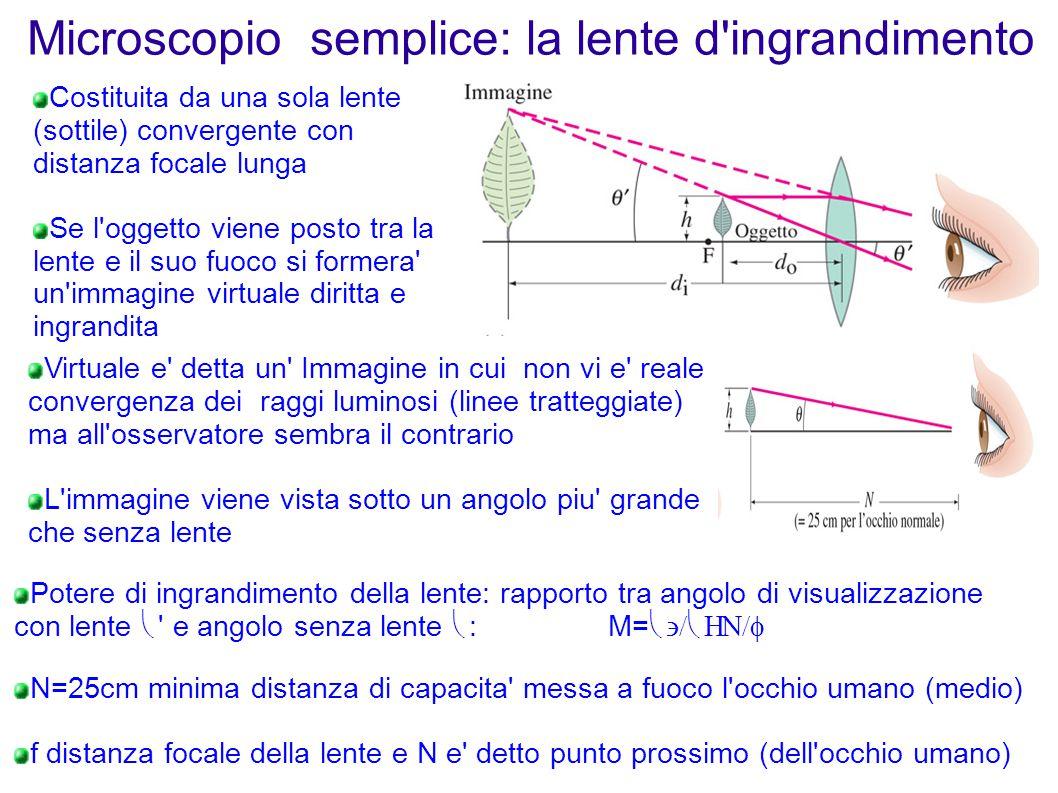 Microscopio semplice: la lente d'ingrandimento Virtuale e' detta un' Immagine in cui non vi e' reale convergenza dei raggi luminosi (linee tratteggiat