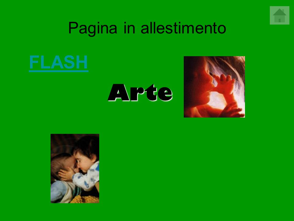Pagina in allestimento FLASH Arte