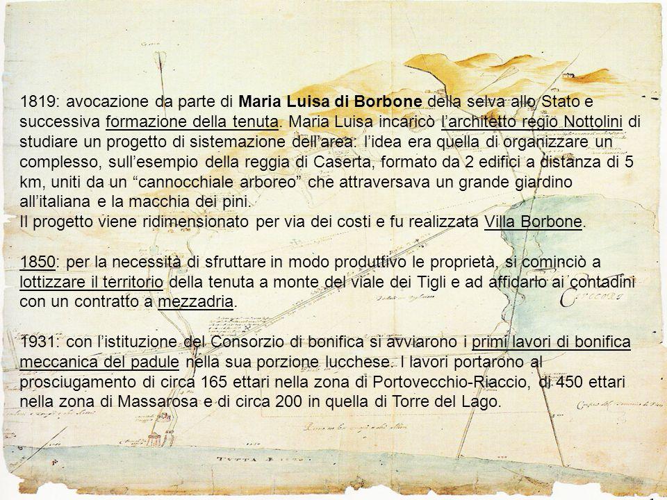 1819: avocazione da parte di Maria Luisa di Borbone della selva allo Stato e successiva formazione della tenuta.