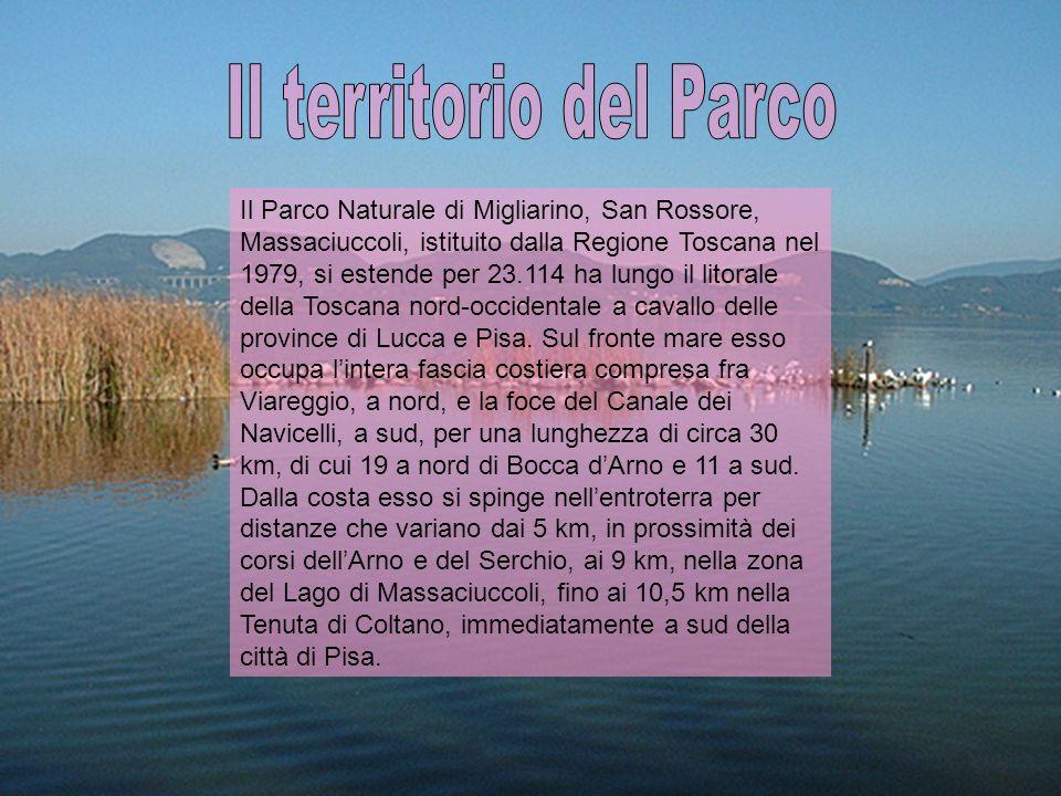 LA TENUTA DI SAN ROSSORE '400: ingresso dei Medici a San Rossore con primi acquisti della Mensa Arcivescovile di Pisa e con requisizioni e soprusi.