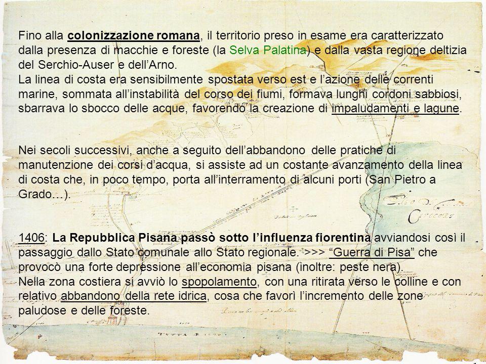 IL PADULE MERIDIONALE DI MASSACIUCCOLI E LA FATTORIA DI VECCHIANO Dalla fine del 12° secolo al primo dopoguerra => due aree dalle caratteristiche differenti: 1) da un lato l'area paludosa 2) dall'altro una fascia lungo il Serchio, larga circa 3 km, nella quale già in epoca comunale si avvia un processo di popolamento.