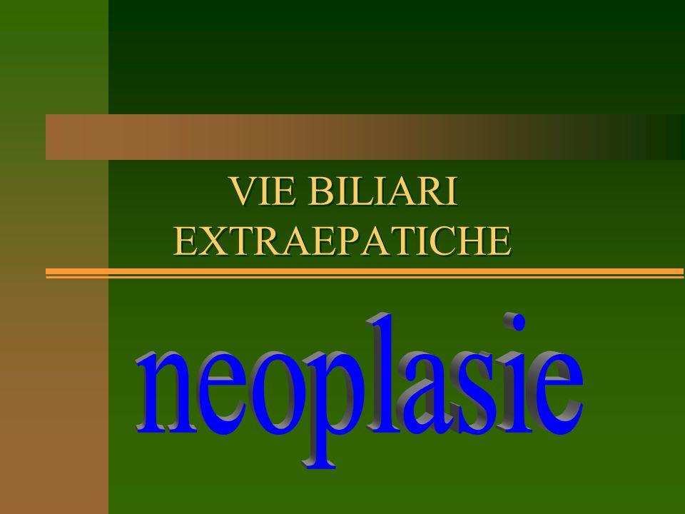 VIE BILIARI EXTRAEPATICHE