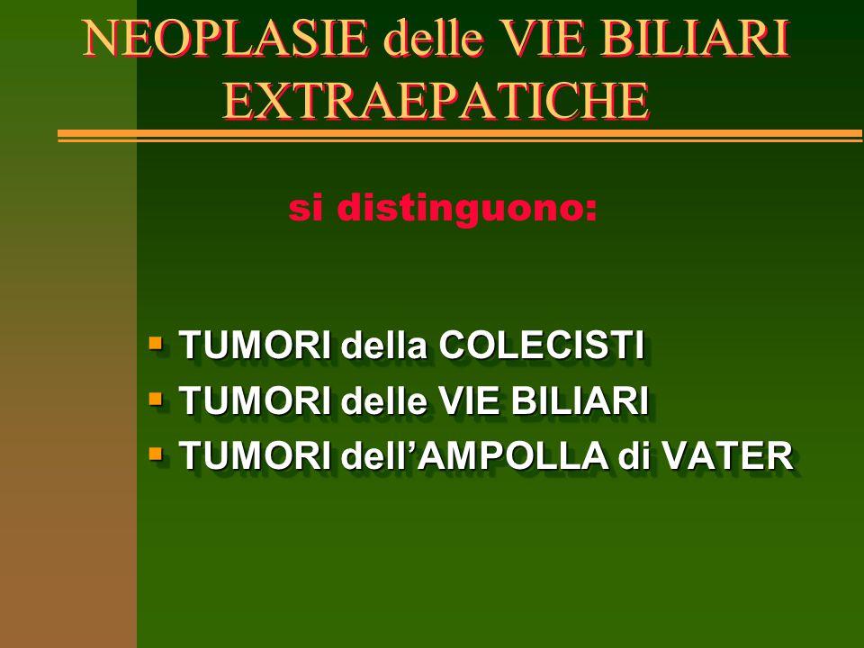 NEOPLASIE delle VIE BILIARI EXTRAEPATICHE  TUMORI della COLECISTI  TUMORI delle VIE BILIARI  TUMORI dell'AMPOLLA di VATER  TUMORI della COLECISTI