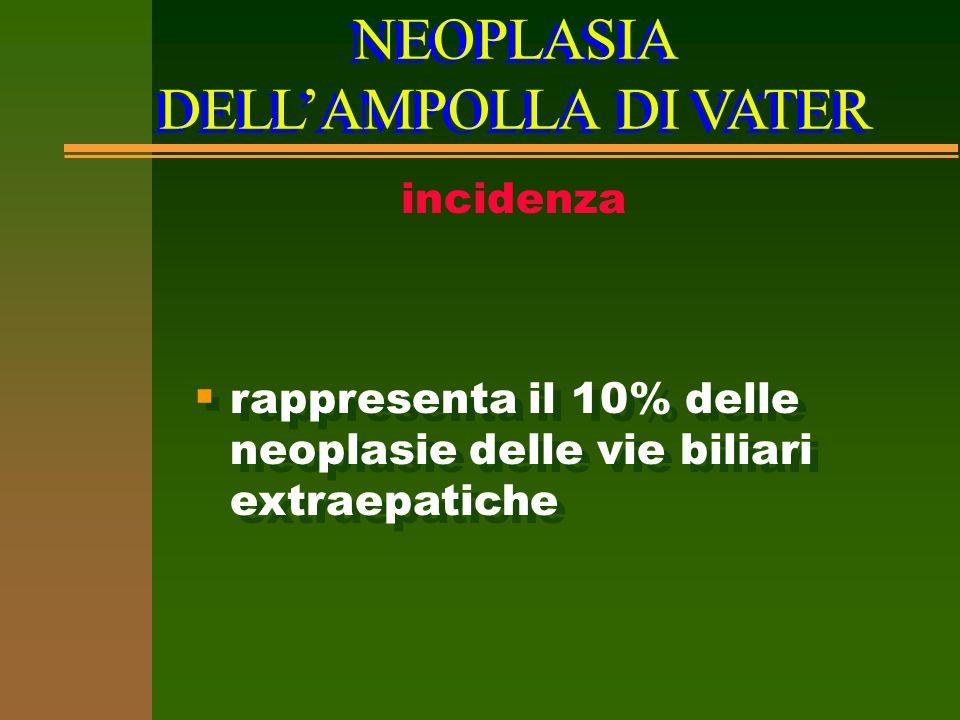 NEOPLASIA DELL'AMPOLLA DI VATER NEOPLASIA DELL'AMPOLLA DI VATER  rappresenta il 10% delle neoplasie delle vie biliari extraepatiche incidenza