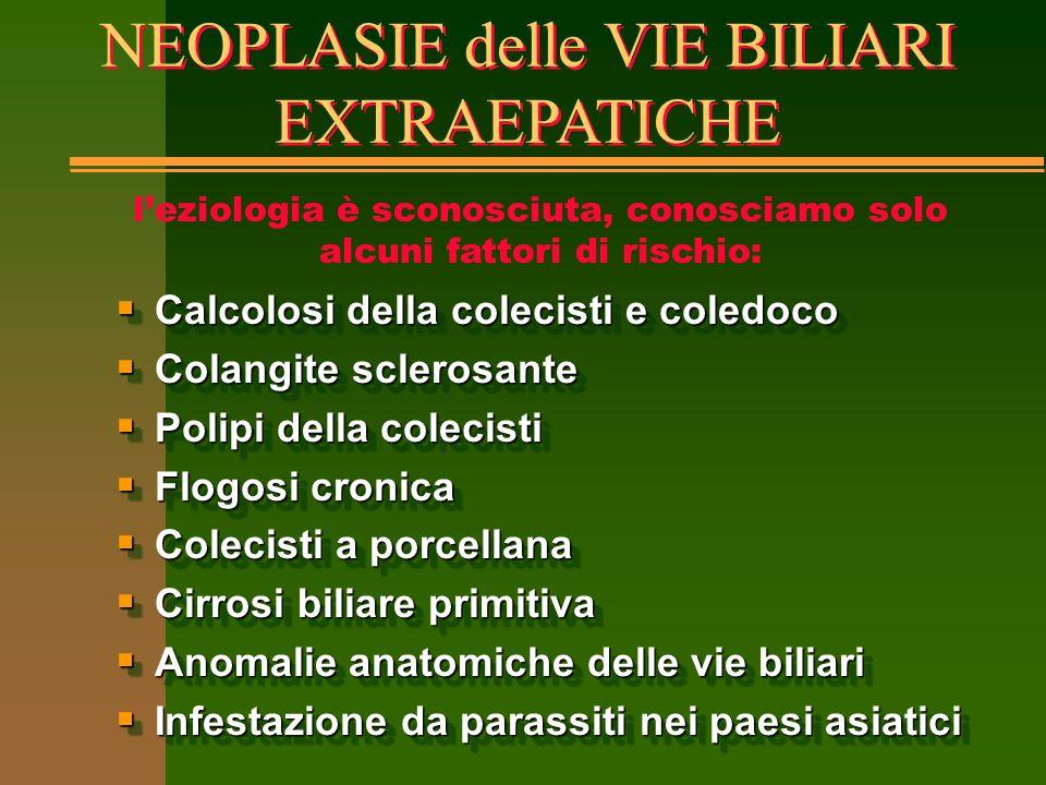 NEOPLASIE delle VIE BILIARI EXTRAEPATICHE  Calcolosi della colecisti e coledoco  Colangite sclerosante  Polipi della colecisti  Flogosi cronica 