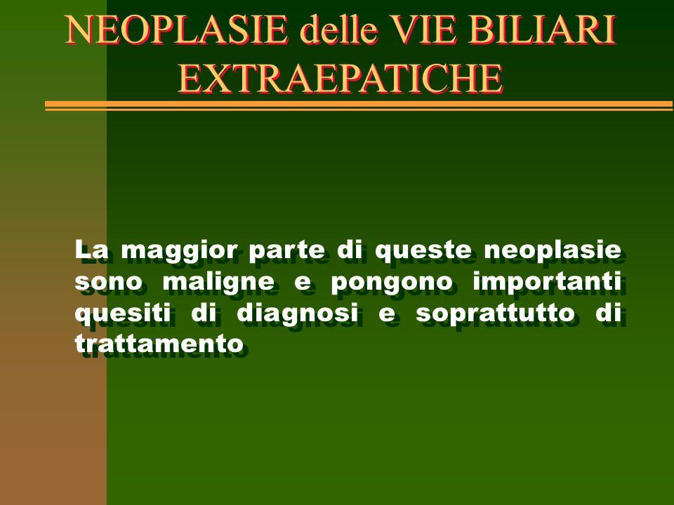 NEOPLASIE delle VIE BILIARI EXTRAEPATICHE La maggior parte di queste neoplasie sono maligne e pongono importanti quesiti di diagnosi e soprattutto di