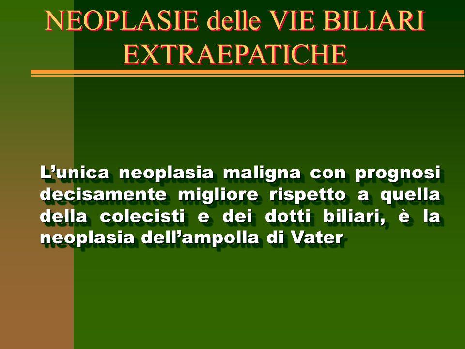 NEOPLASIE delle VIE BILIARI EXTRAEPATICHE L'unica neoplasia maligna con prognosi decisamente migliore rispetto a quella della colecisti e dei dotti bi