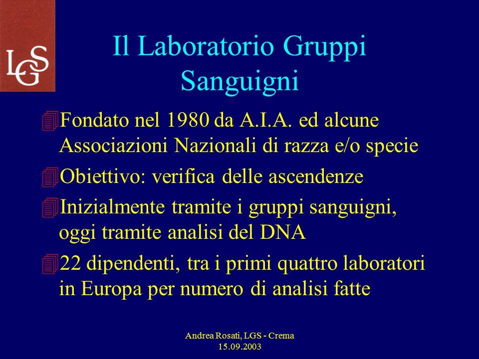 Andrea Rosati, LGS - Crema 15.09.2003 Il Laboratorio Gruppi Sanguigni 4Fondato nel 1980 da A.I.A.