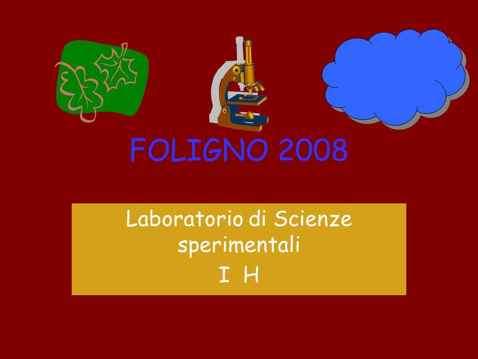 FOLIGNO 2008 Laboratorio di Scienze sperimentali I H