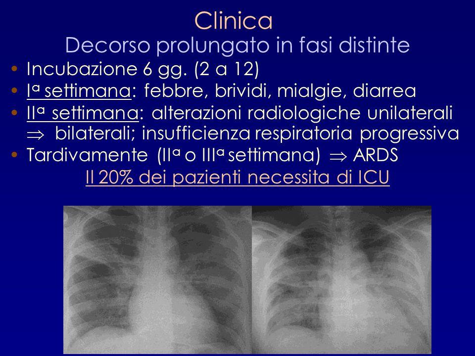 Clinica Decorso prolungato in fasi distinte Incubazione 6 gg. (2 a 12) I a settimana: febbre, brividi, mialgie, diarrea II a settimana: alterazioni ra