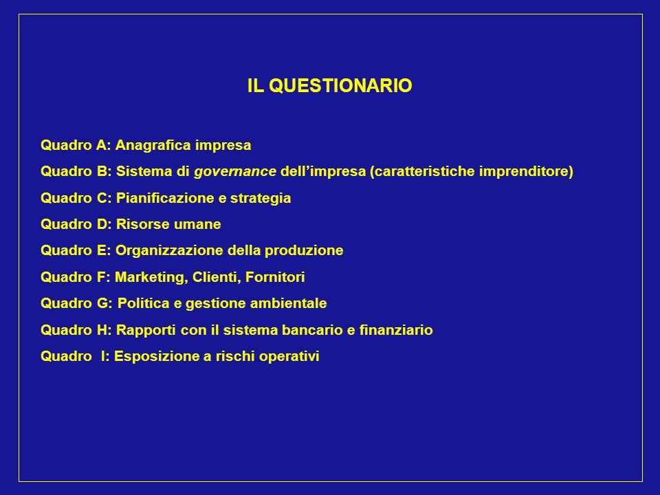 IL QUESTIONARIO Quadro A: Anagrafica impresa Quadro B: Sistema di governance dell'impresa (caratteristiche imprenditore) Quadro C: Pianificazione e st