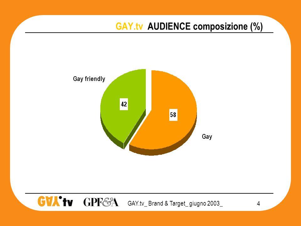 GAY.tv_ Brand & Target_ giugno 2003_ 15 GAY.tv POSIZIONAMENTO 2003 audience PRIVATO CHIUSURA SOCIALE APERTURA Guardano GAY.tv almeno 1 volta al mese  T&T Monitor 3SC