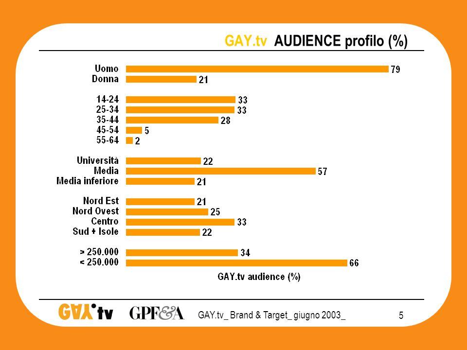 GAY.tv_ Brand & Target_ giugno 2003_ 16 GAY.tv POSIZIONAMENTO 2003 audience PRIVATO CHIUSURA SOCIALE APERTURA   Gay friendly Gay T&T Monitor 3SC