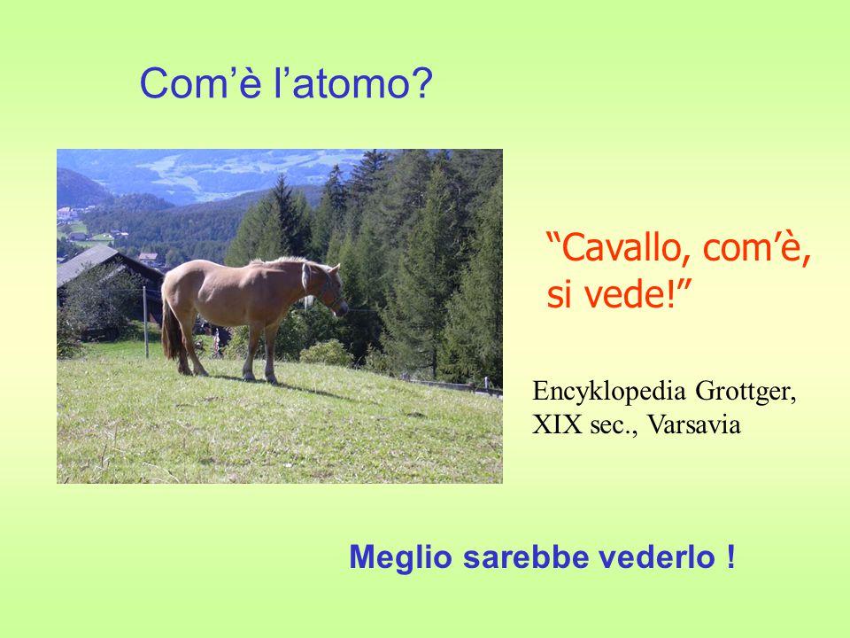 Cavallo, com'è, si vede! Meglio sarebbe vederlo ! Encyklopedia Grottger, XIX sec., Varsavia