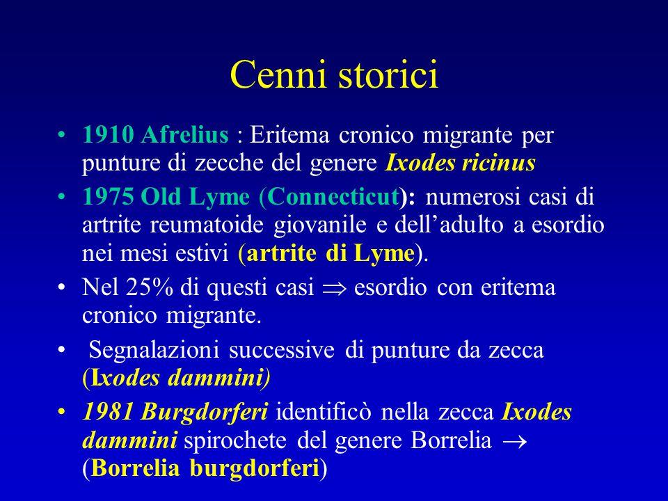 Cenni storici 1910 Afrelius : Eritema cronico migrante per punture di zecche del genere Ixodes ricinus 1975 Old Lyme (Connecticut): numerosi casi di a
