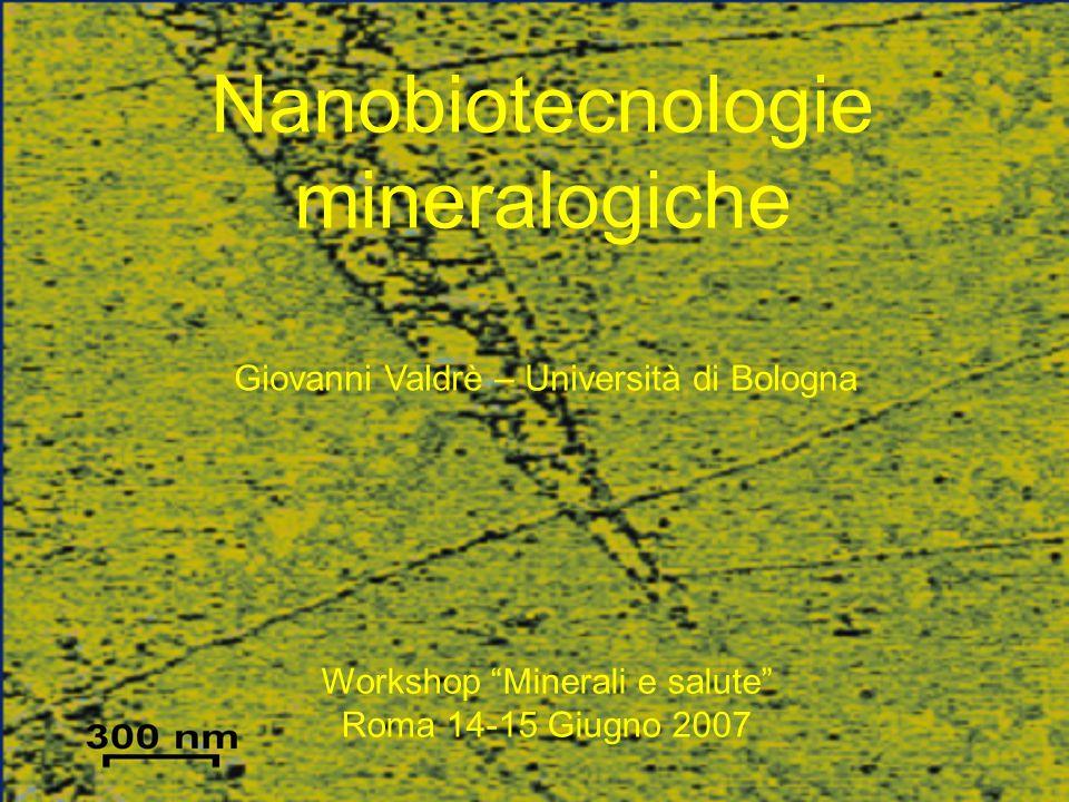 """Nanobiotecnologie mineralogiche Giovanni Valdrè – Università di Bologna Workshop """"Minerali e salute"""" Roma 14-15 Giugno 2007"""