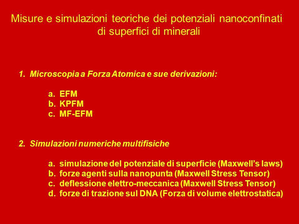 Misure e simulazioni teoriche dei potenziali nanoconfinati di superfici di minerali 1.Microscopia a Forza Atomica e sue derivazioni: a.EFM b.KPFM c.MF