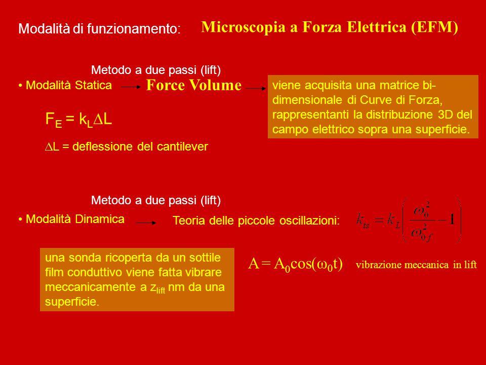 Modalità di funzionamento: Microscopia a Forza Elettrica (EFM) Force Volume Teoria delle piccole oscillazioni: viene acquisita una matrice bi- dimensi