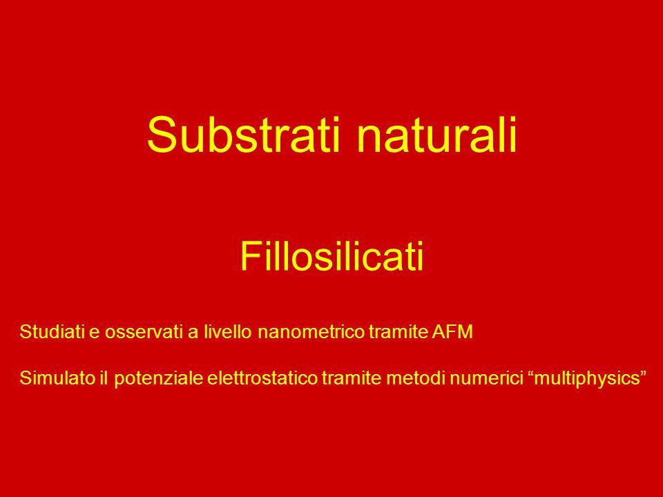Substrati naturali Fillosilicati Studiati e osservati a livello nanometrico tramite AFM Simulato il potenziale elettrostatico tramite metodi numerici