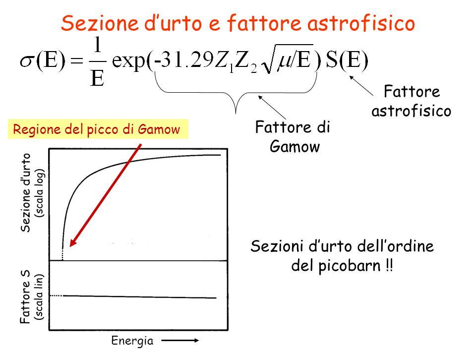 Sezione d'urto e fattore astrofisico Regione del picco di Gamow Energia Fattore S (scala lin) Sezione d'urto (scala log) Fattore astrofisico Sezioni d'urto dell'ordine del picobarn !.
