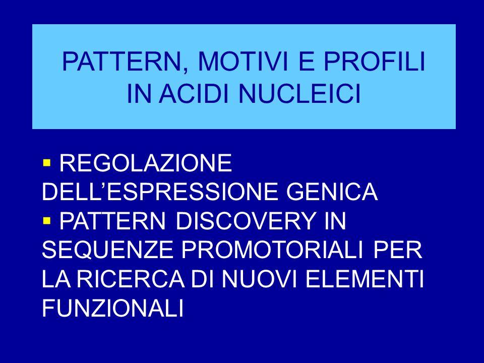 PATTERN, MOTIVI E PROFILI IN ACIDI NUCLEICI  REGOLAZIONE DELL'ESPRESSIONE GENICA  PATTERN DISCOVERY IN SEQUENZE PROMOTORIALI PER LA RICERCA DI NUOVI ELEMENTI FUNZIONALI