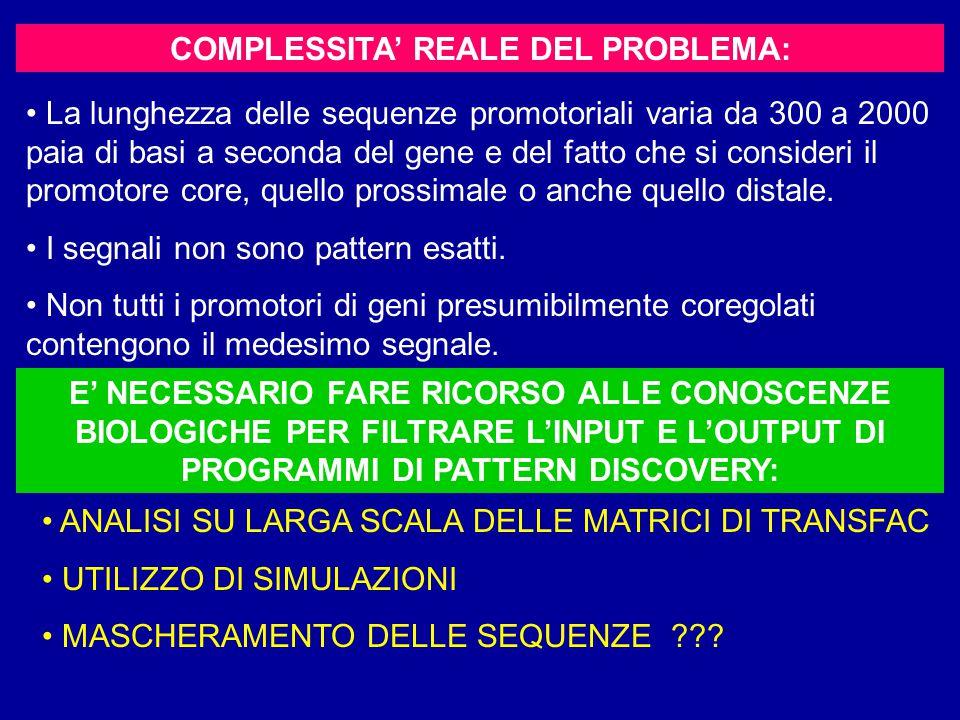 COMPLESSITA' REALE DEL PROBLEMA: La lunghezza delle sequenze promotoriali varia da 300 a 2000 paia di basi a seconda del gene e del fatto che si consideri il promotore core, quello prossimale o anche quello distale.