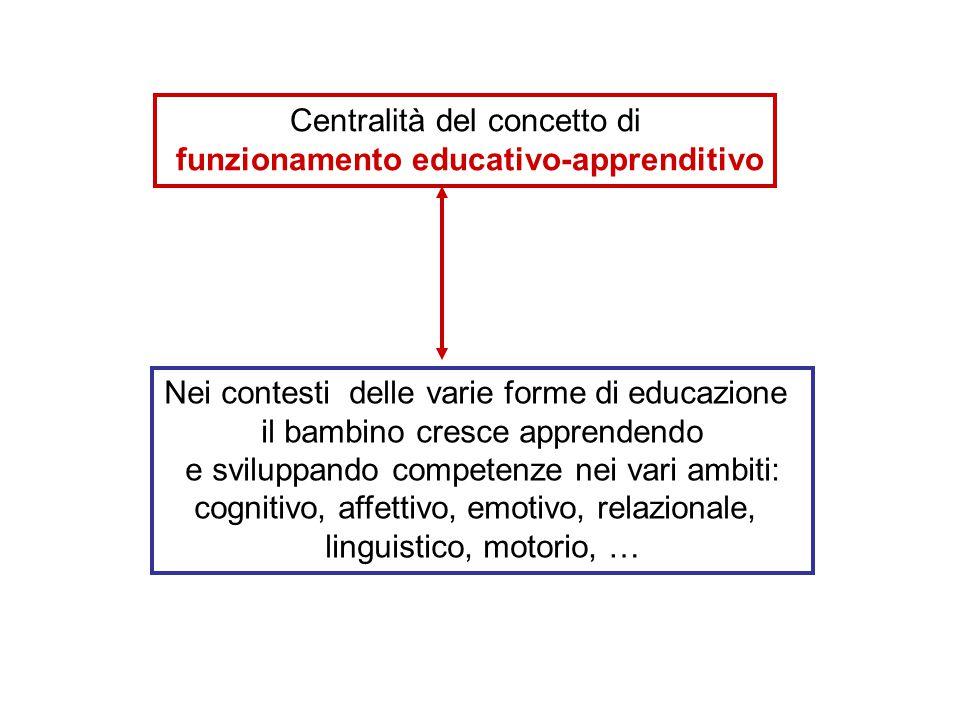 Centralità del concetto di funzionamento educativo-apprenditivo Nei contesti delle varie forme di educazione il bambino cresce apprendendo e sviluppando competenze nei vari ambiti: cognitivo, affettivo, emotivo, relazionale, linguistico, motorio, …