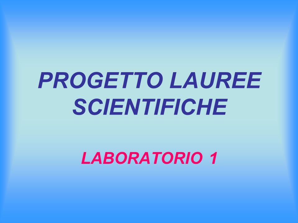 PROGETTO LAUREE SCIENTIFICHE LABORATORIO 1