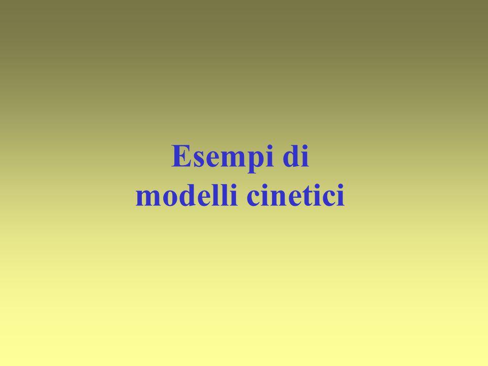 Esempi di modelli cinetici