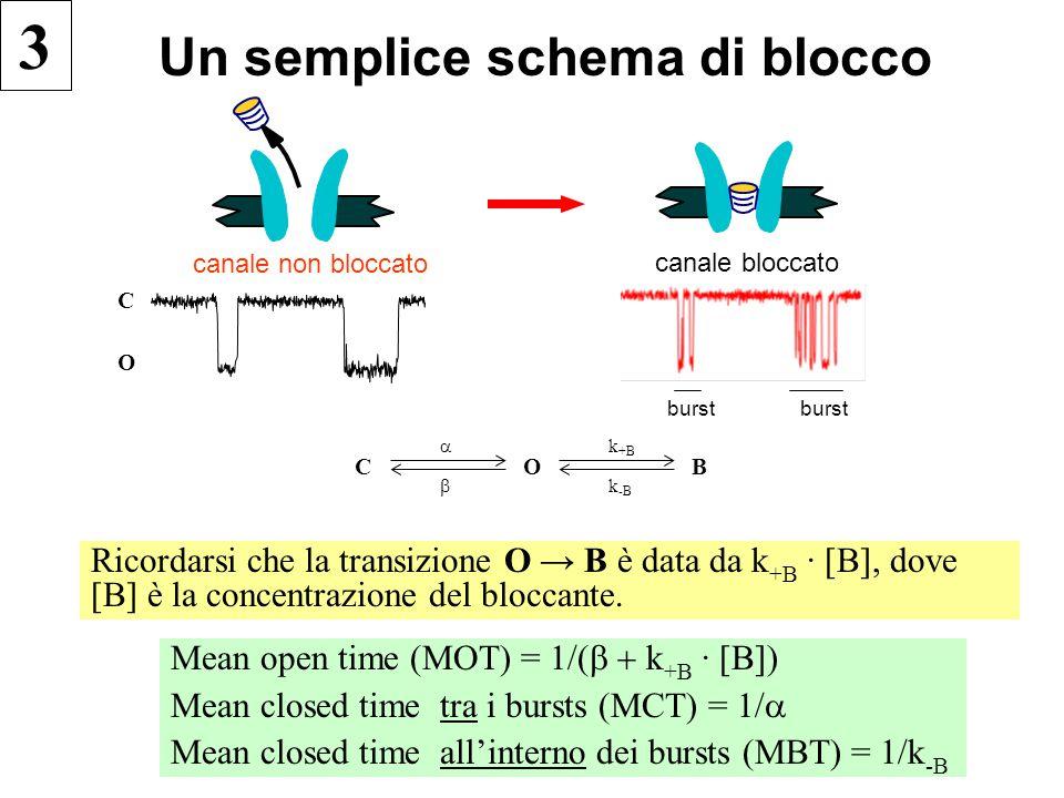 Un semplice schema di blocco Ricordarsi che la transizione O →  B è data da k +B · [B], dove [B] è la concentrazione del bloccante. Mean open time (M