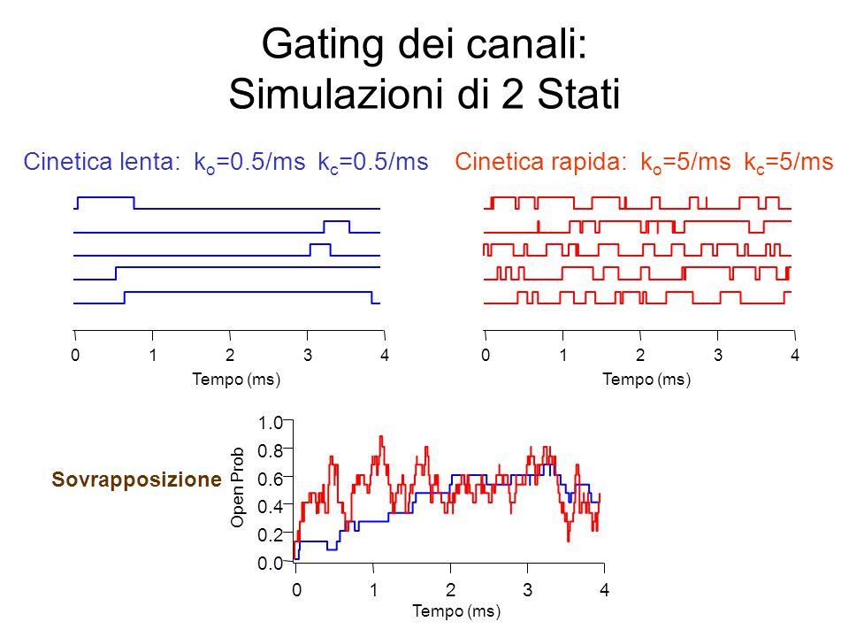 Gating dei canali: altre simulazioni a due stati 43210 Tempo (ms) 1.0 0.8 0.6 0.4 0.2 0.0 Open Prob 43210 Tempo (ms) Alta p open : k o =5/ms k c =0.5/ms 43210 Tempo (ms) Bassa p open : k o =0.5/ms k c =5/ms Sovrapposizione